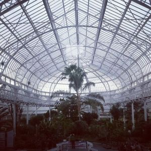 People's Palace Winter Gardens